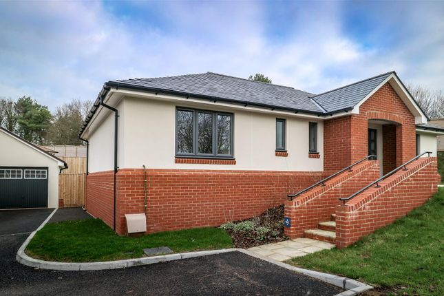 Thumbnail Detached bungalow for sale in Moonhill Copse, West Clyst, Exeter