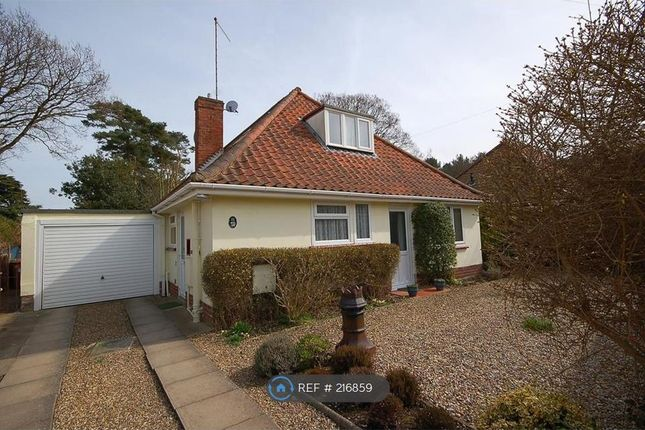 Thumbnail Bungalow to rent in Knowle Road, Sheringham