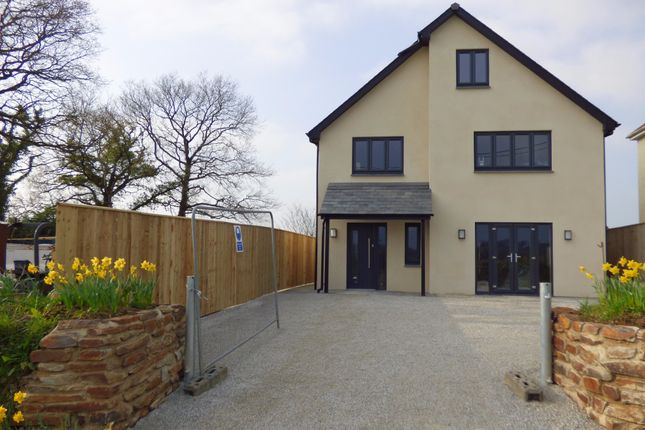 Thumbnail Detached house for sale in Broadwoodkelly, Winkleigh