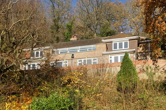 4 bed property to rent in Deanery Road, Godalming