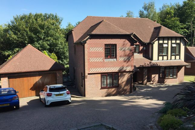 Thumbnail Detached house for sale in St. Kitts Close, St. Leonards-On-Sea