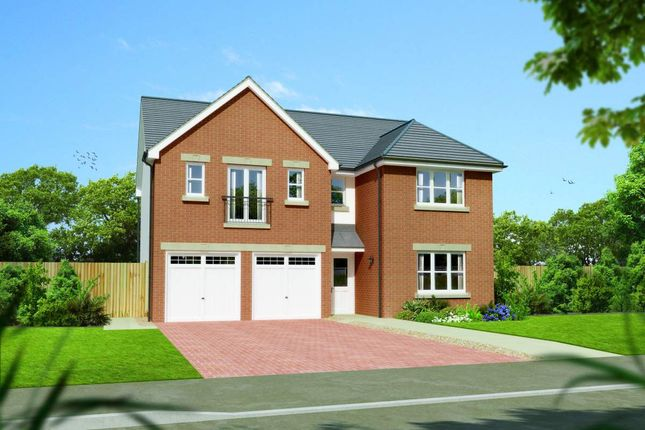 """Thumbnail Detached house for sale in """"Kingsmoor"""" at Colinhill Road, Strathaven"""