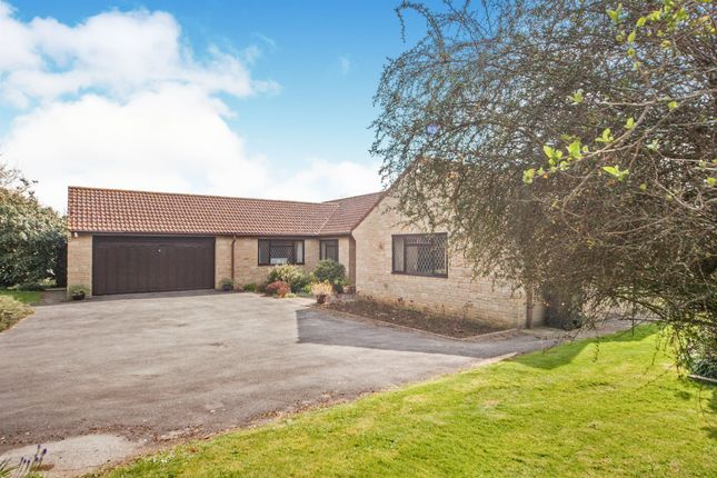 Thumbnail Detached bungalow for sale in Claycastle, Haselbury Plucknett, Crewkerne
