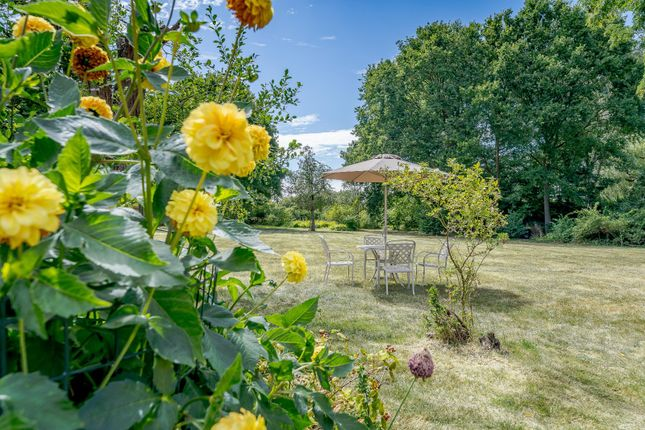 Garden of Glaziers Lane, Normandy, Guildford, Surrey GU3