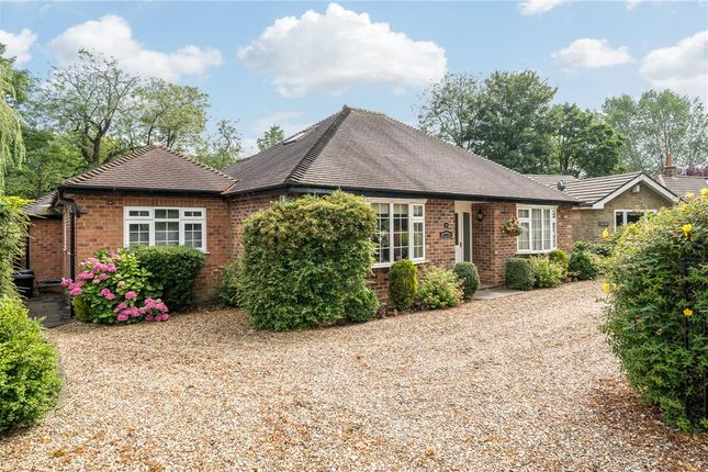 Thumbnail Bungalow for sale in Borrage Lane, Ripon, North Yorkshire