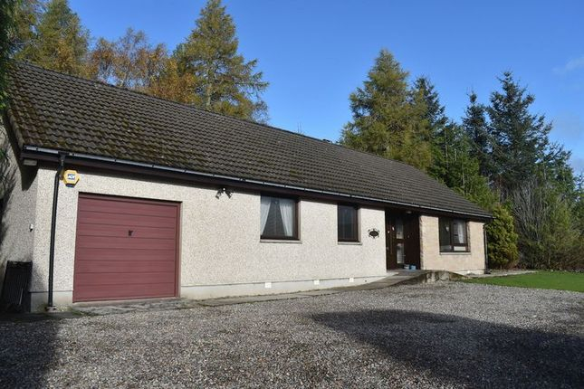 Thumbnail Detached bungalow to rent in Lochmhor Cottages, Gorthleck, Inverness