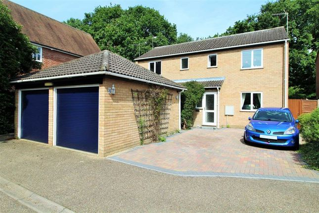 Thumbnail Detached house for sale in Broad Oaks Park, St. Johns, Colchester