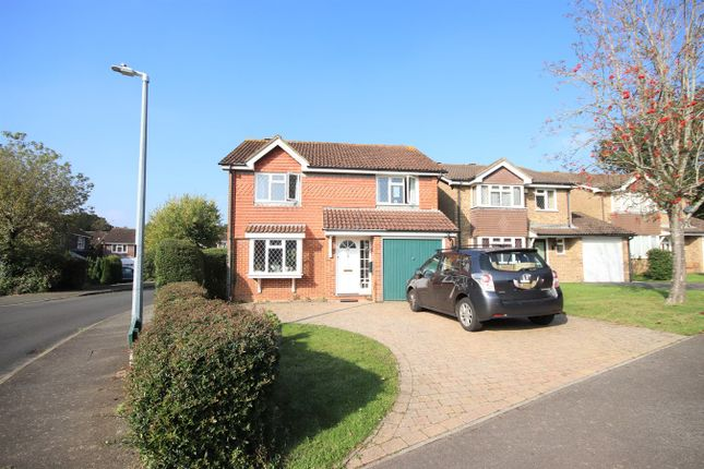 Thumbnail Detached house to rent in Fontwell Avenue, Bexhill-On-Sea