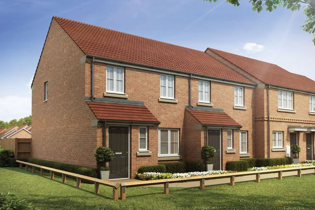 """Thumbnail Semi-detached house for sale in """"The Marston"""" at Cocked Hat Park, Sowerby, Thirsk"""