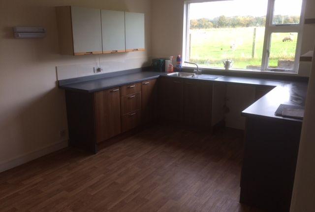 Thumbnail Semi-detached house to rent in Mains Of Esslemont, Ellon, Aberdeenshire