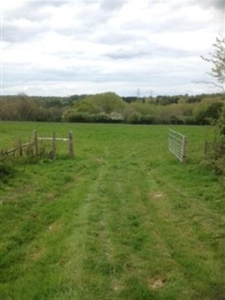 Thumbnail Land for sale in Pottery Lane, Brede, Rye