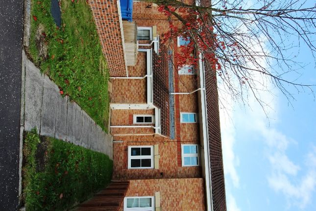 Thumbnail Semi-detached house to rent in Cricketfield Place, Armadale, West Lothian