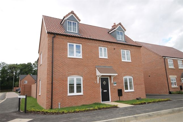 Thumbnail Detached house for sale in The Heights, Newark, Nottinghamshire.