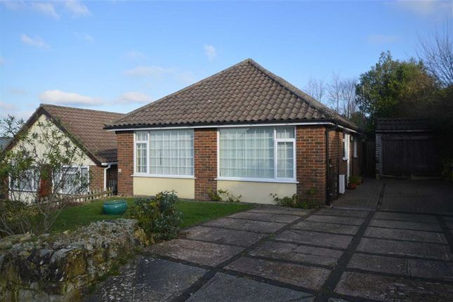 Thumbnail Detached bungalow to rent in Mayview Close, Broad Oak, Heathfield