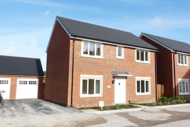 Thumbnail Detached house to rent in Diamond Way, Blandford Forum, Dorset