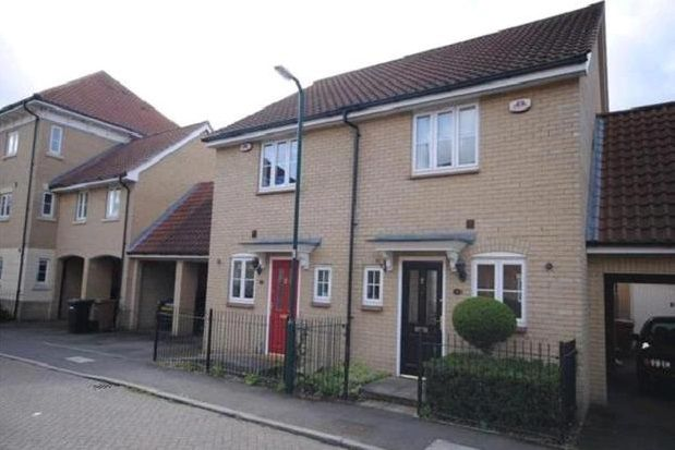 Thumbnail Property to rent in Ridgewell Avenue, Chelmsford