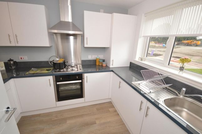 Thumbnail Detached house for sale in Lorne Road, Larbert