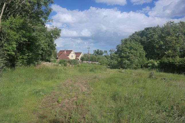 Thumbnail Land for sale in Fingringhoe Road, Rowhedge, Colchester