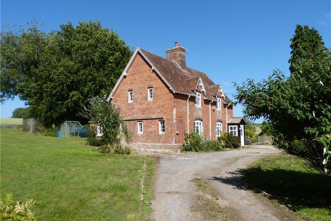 Thumbnail Detached house to rent in Gussage All Saints, Wimborne, Dorset