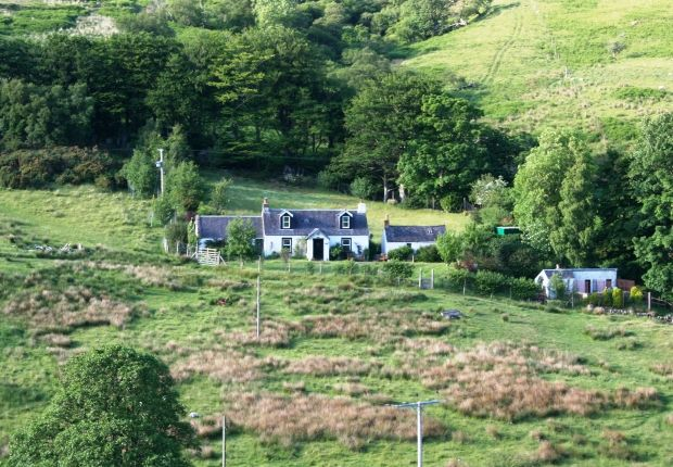 Thumbnail Detached house for sale in Lochranza, Isle Of Arran KA27, Lochranza,