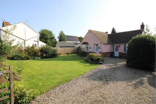 Thumbnail Detached bungalow for sale in Well Lane, Galleywood, Chelmsford