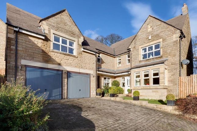 Thumbnail Property for sale in Totley Hall Croft, Sheffield