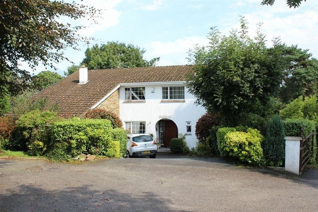 Thumbnail Detached house for sale in Crinnis Close, Carlyon Bay, St. Austell