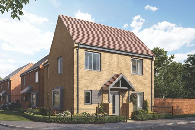 Thumbnail Detached house for sale in The Willows, Barbe Baker Avenue, West End, Southampton