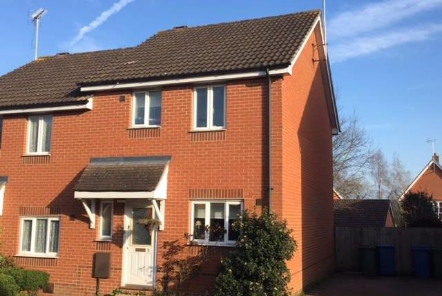 Thumbnail Semi-detached house to rent in Lacewing Close, Pinewood, Ipswich