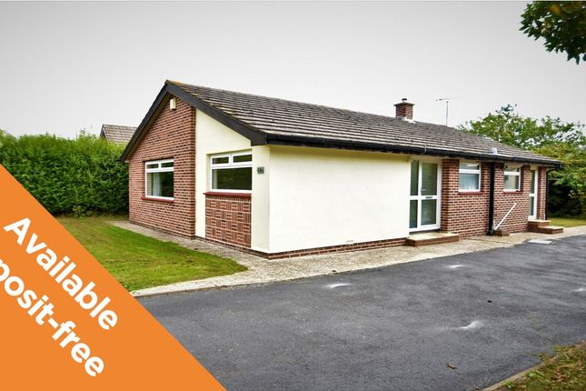 Thumbnail Detached bungalow to rent in Sutton Road, Cowplain, Waterlooville