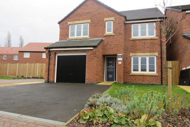 Thumbnail Detached house for sale in The Oaks, Greylees, Sleaford