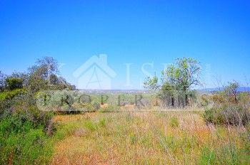 Thumbnail Land for sale in Alcantarilha, Silves, Algarve, Portugal