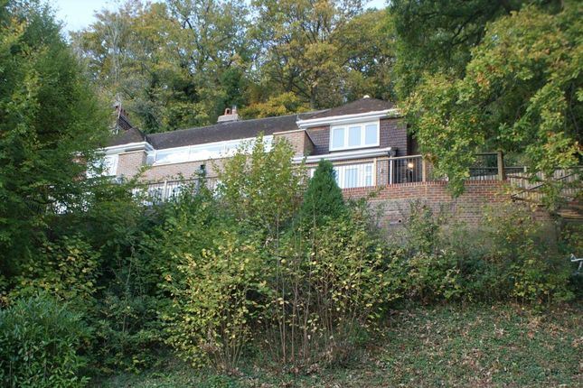 4 bed detached house to rent in Deanery Road, Godalming
