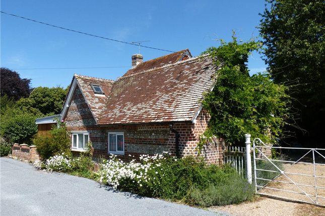 Thumbnail Detached house to rent in Church Lane, Shillingstone, Blandford Forum, Dorset