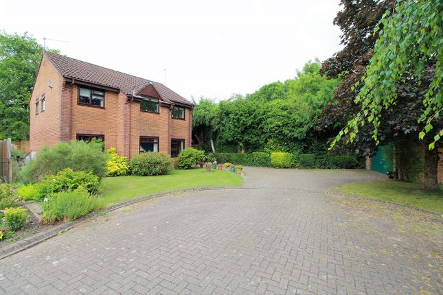 Thumbnail Detached house for sale in Llwyn On, Ponthir, Newport