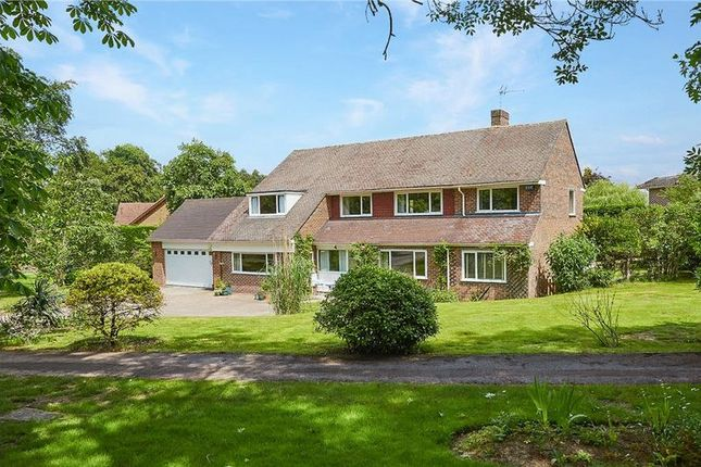 Thumbnail Detached house for sale in Hither Chantlers, Langton Green, Tunbridge Wells