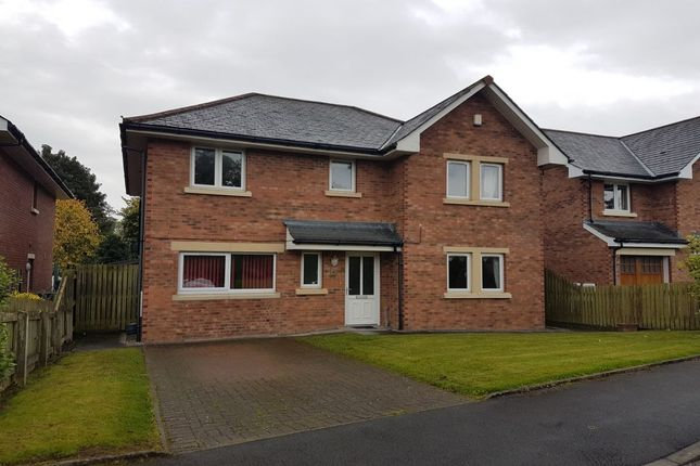 Thumbnail Detached house to rent in Marchfield Mount, Dumfries