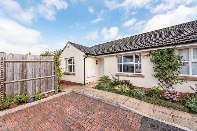 Thumbnail Bungalow for sale in Stoke Mews, Bristol