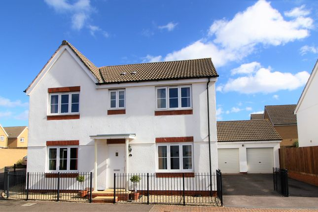 Thumbnail Detached house for sale in Resolution Road, Exeter