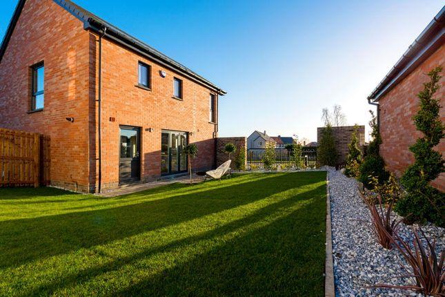 Thumbnail Detached house for sale in The Hepburn Devongrange, Sauchie, Alloa, Clackmannanshire