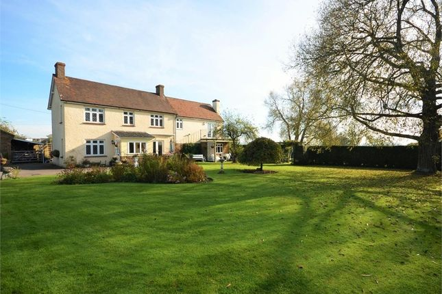 Thumbnail Detached house for sale in Dover Street, Stour Row, Shaftesbury