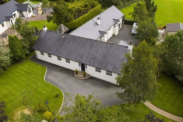 Thumbnail Detached house for sale in Clogher Road, Hillsborough, Down