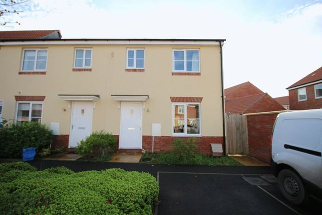 Thumbnail Property to rent in Seven Acres, Cranbrook, Exeter