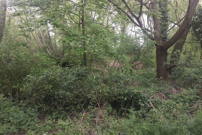 Thumbnail Land for sale in Roke, Wallingford