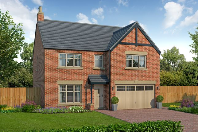 Thumbnail Detached house for sale in Forest Lane, Kirklevington, Yarm