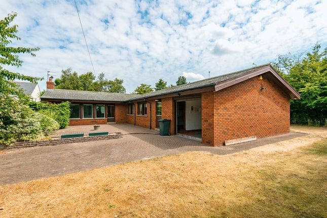 Thumbnail Detached bungalow to rent in Jacksmere Lane, Scarisbrick, Ormskirk