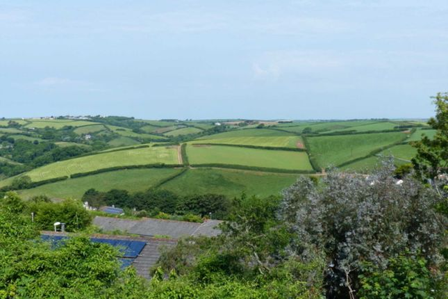 Thumbnail Semi-detached house for sale in Main Road, Salcombe