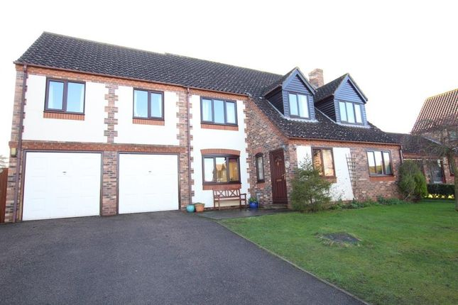 Thumbnail Detached house for sale in The Orchards, Wilburton, Ely