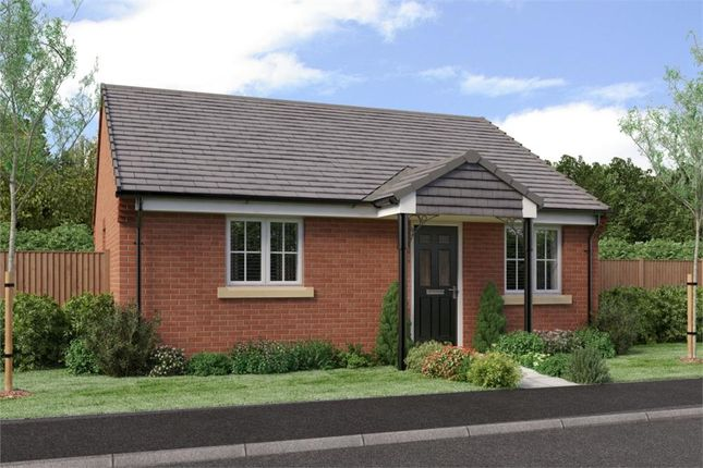 """Thumbnail Bungalow for sale in """"The Bede- Terraced"""" at Buttercup Gardens, Blyth"""