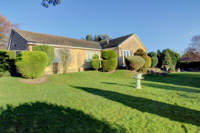 Thumbnail Bungalow for sale in Hebron, Morpeth